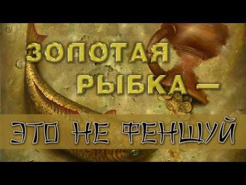 Чери амулет вологодская область