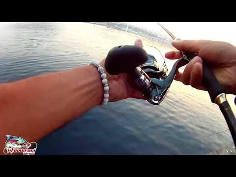 In totale per pescare in novoperedelkino