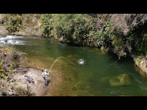 Fly Fishing THE BEST Trout River i have ever Seen!