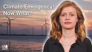 🚨Climate Emergency🚨 Now what?