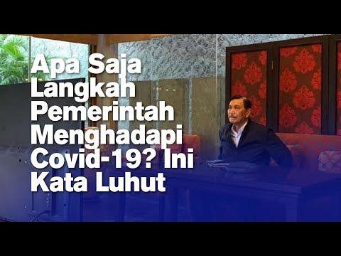 Apa Saja Langkah Pemerintah Menghadapi Covid-19? Ini Kata Luhut