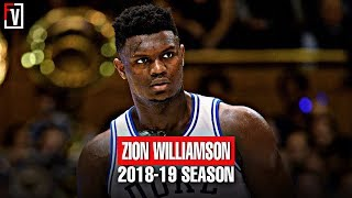 Zion Williamson Duke Full Freshmen Season Highlights Montage 2018-19 -22.6 PPG, 8.9 RPG, MONSTER!