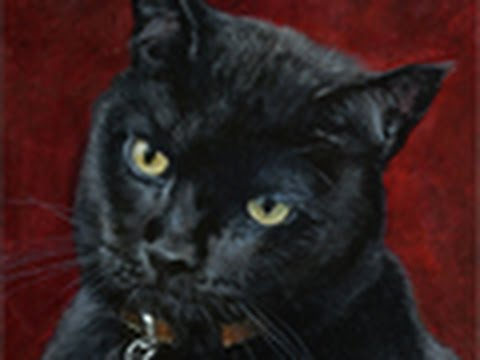 Cat Portrait Painting Of Boris 1, Time-lapse, Speed-painting
