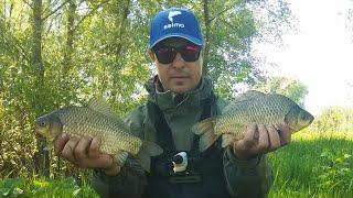 Фидер для ловли карася на реке