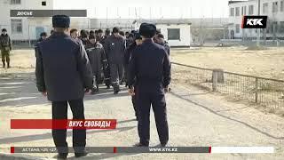 Кого выпустят из тюрьмы досрочно, рассказали прокуроры