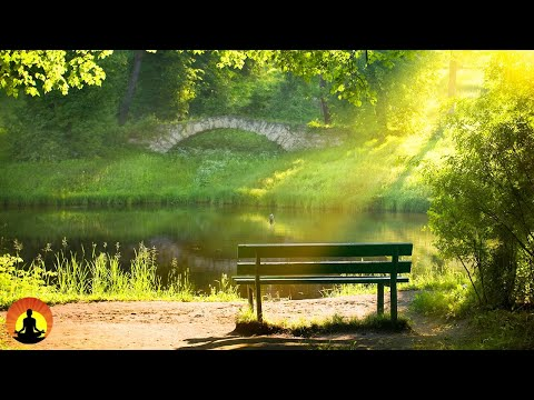 🔴 Relaxing Music 24/7, Sleeping Music, Relaxati | Youtube