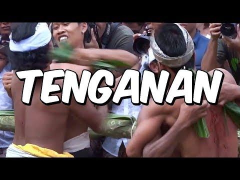 Should you visit Tenganan, the oldest village in Bali?