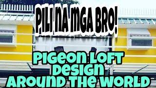 Pigeon Loft Design Around The World #loftdesign #pigeonrace #pigeonracing #racingpigeon