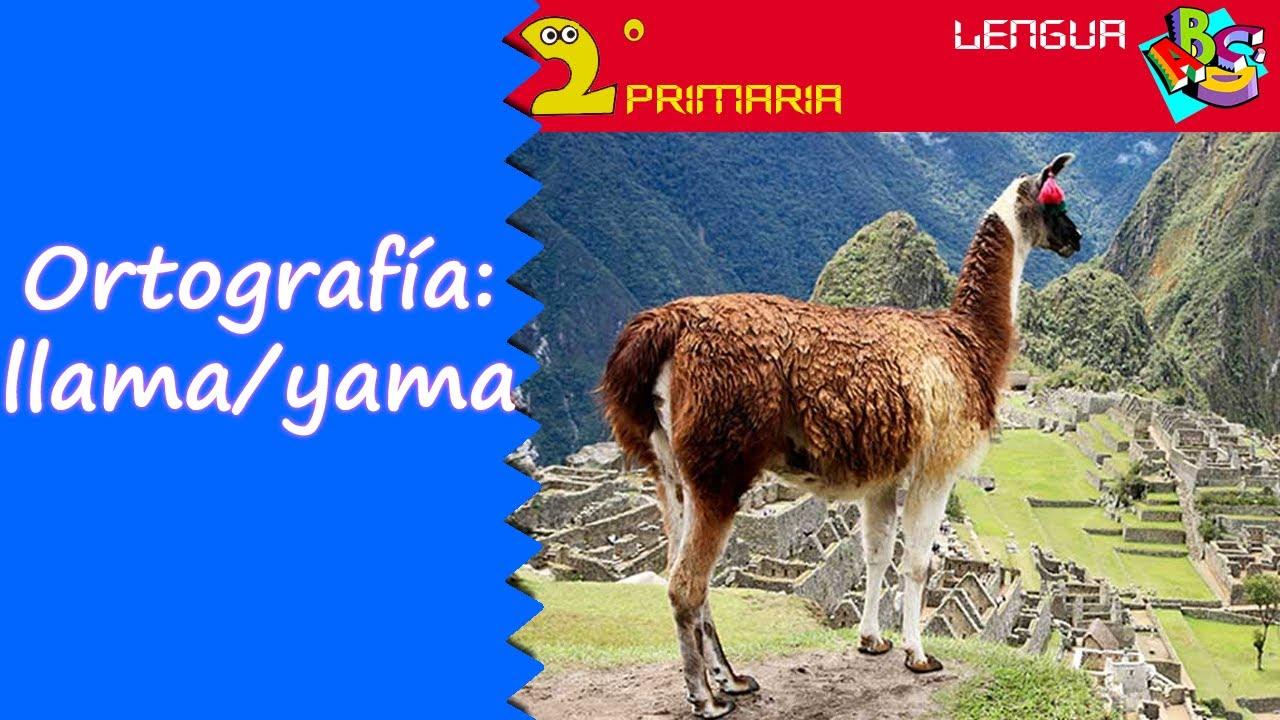 Lengua, 2º. Aprendo a escribir. Ortografía: llama-yama