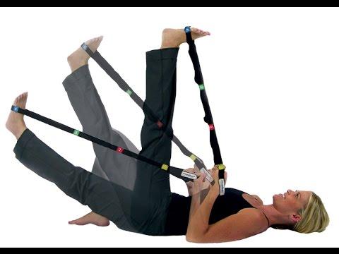 Sekcja fizjologicznego tego mięśnia