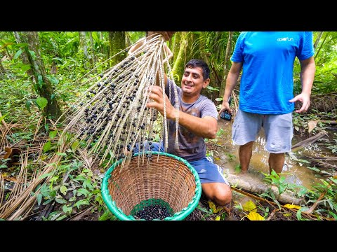 , title : 'Unseen SUPERFOOD in Amazon Jungle - Real Way to Eat AÇAÍ (You'll Be Surprised) in Belém, Brazil!