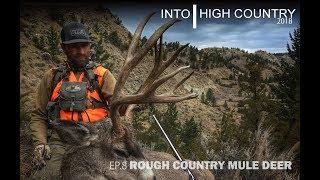 Rough Country Mule Deer