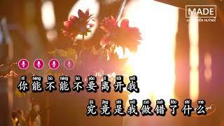 Karaoke [Pinyin] Anh Có Thể Đừng Rời Xa Em Được Không - Mạc Khiếu Tỷ Tỷ   你能不能不要离开我 (和声伴奏版)