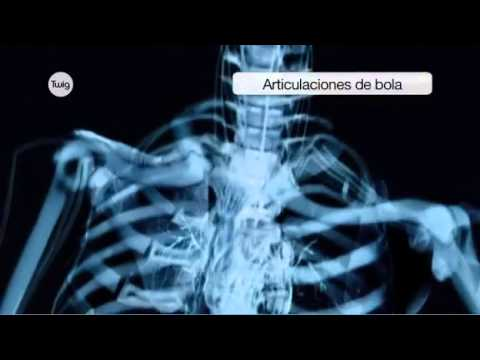 Ejercicios en simuladores en osteocondrosis