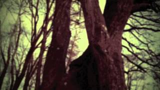 Black Sun - Kadavar  (Video)