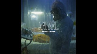 ACRU X WOS   ANIMAL (VIDEO OFICIAL)