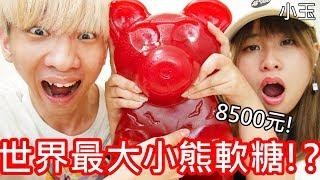 【小玉】一隻8500!世界最大的小熊軟糖!?【總重11公斤】