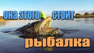 Ловля щуки в ставропольском крае места