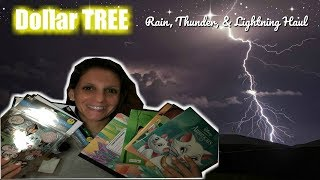 DOLLAR TREE | NIGHT HAUL IN THE RAIN with thunder and lightning (ASMR)