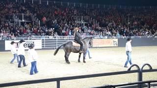 Супер танцы с лошадью! Отлично придумали