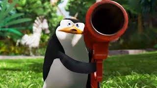 DreamWorks Madagascar Em Português   Os Pinguins De Madagascar Para O Resgate   Desenhos Animados