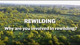 Thumbnail for Rewilding – Why Should You Care?
