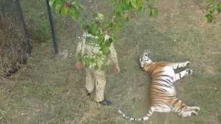 Василиса, парк львов