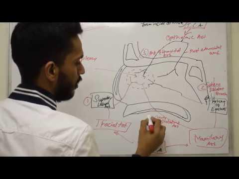 Hipertension 2 hap 1 që shkallën e rrezikut 2