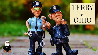 STOP AND FRISK: TERRY v. OHIO | Criminal Law