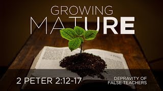 Depravity of False Teachers