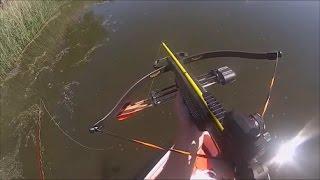 Crossbow Fishing