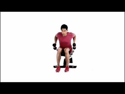 Seated Dumbbell Row
