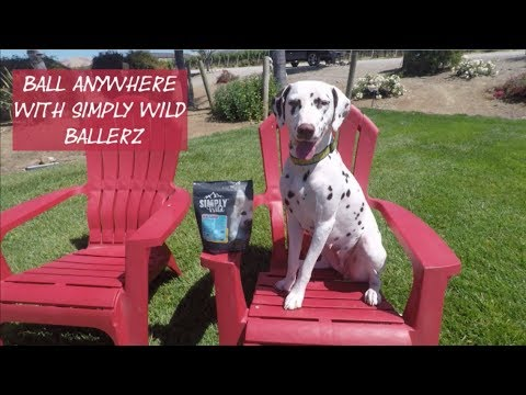 Simply Wild Mini Ballerz Chicken Dog Treats (10.5 oz) Video