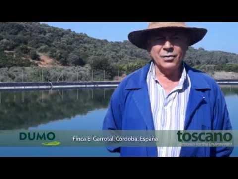 DUMO-AC, mitigador de algas por ultrasonidos