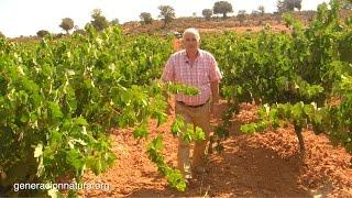 preview picture of video 'Vinos Denominación de Origen Utiel-Requena | GeneracionNatura.org'