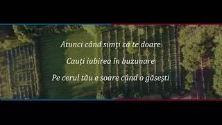 Ioana Ignat X Edward Sanda   In Palma Ta (ver.karaoke And Remix)
