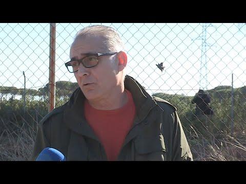 La CHG calcula clausurar en dos meses 77 pozos ilegales en el entorno de Doñana