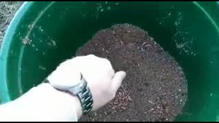 Мосфишер рыбалка в чехове высоково отчет