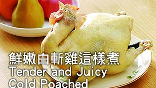 [Ytower Gourmet Food Network] Tender and Juicy Cold Poached Chicken
