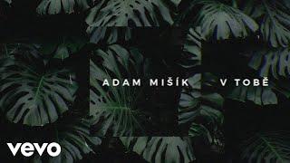 Adam Mišík   V Tobě (Lyric Video)