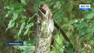 В Приморье рыбаки вышли на лов щуки