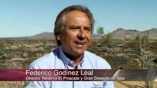Especiales Noticias - El Patrimonio Mundial de México