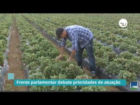 Frente da Agricultura Familiar debate prioridades para o setor frente à pandemia - 04/06/20