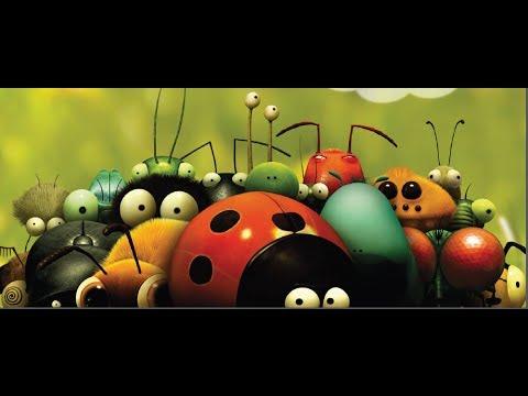 Parazita környezet