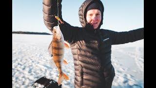 Ловля щуки зимой на финском заливе