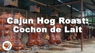 Cajun Hog Roast: Cochon de Lait Festival