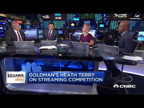 Goldman's Heath Terry on tech, regulation and valuations
