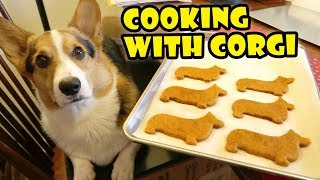 COOKING with CORGI DOG for CHRISTMAS || Life After College: Ep. 577