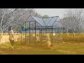 Orangery Features Video