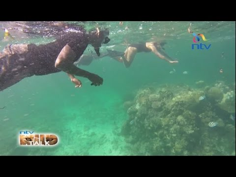NTV Wild Talk S4 E3: 'Exploring mangroves and Coral gardens'